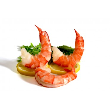 Frozen LARGE -Cooked PD Tail-Off Shrimp-500 Gm