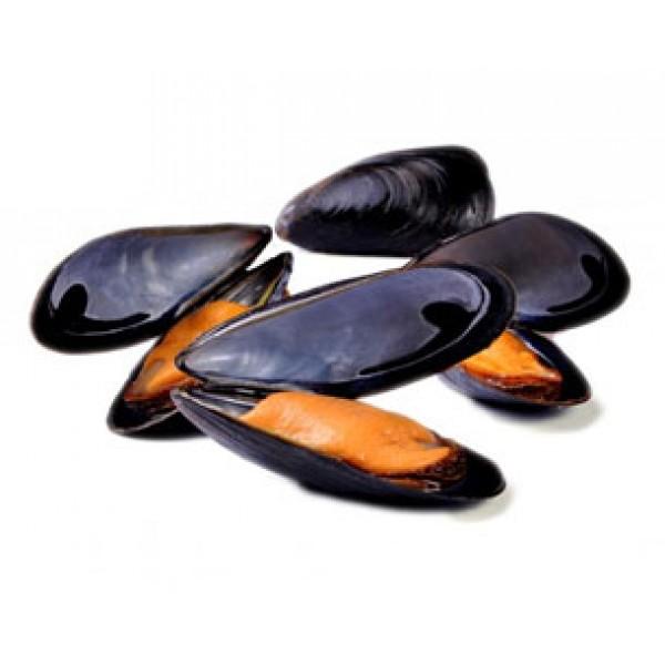 FROZEN FULL SHELL BLACK MUSSELS-1000 Gm